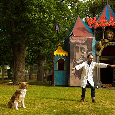 dog-show-featured